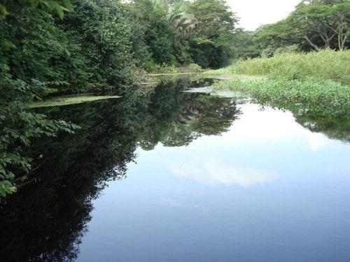 Refugio Nacional de Vida Silvestre Cipancí