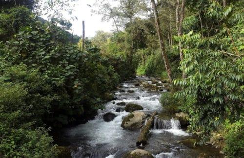 Reservas de la Biosfera en Costa Rica